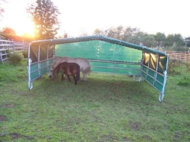 Weidezelt 360 mini für Kleinpferde